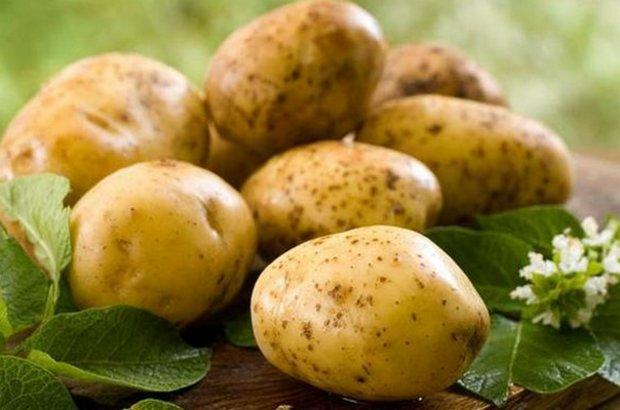 стимулятор роста для картофеля